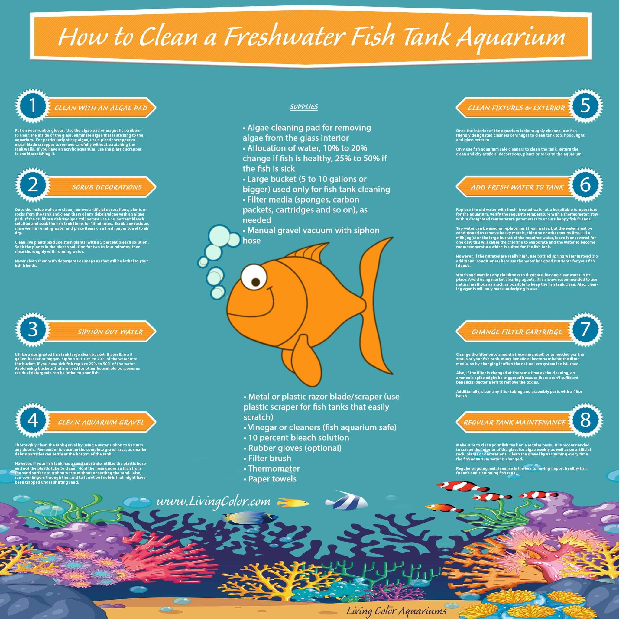 how to clean a freshwater fish tank aquarium infographic living